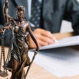 Especialización en Derecho Constitucional
