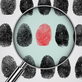Psicología jurídica y forense