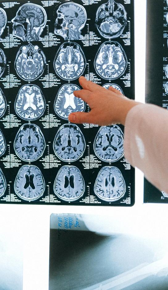 Maestría en Neurodesarrollo y Aprendizaje